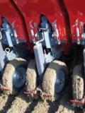 La plantation des semences de bases s'effectue à partir de l'automne.